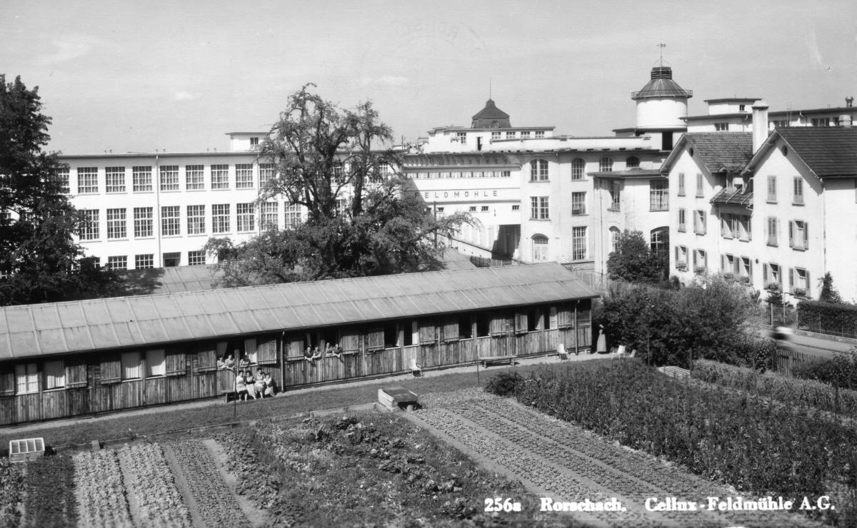 Cellux-Feldmühle